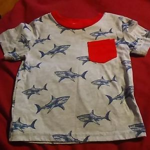 Toddler boys shirts bundle